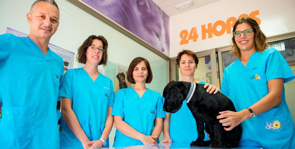 Urgencias 24h -  Clínica Veterinaria en Córdoba Victoria